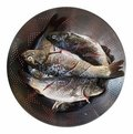 Fresh Fish in a Sieve Royalty Free Stock Photo