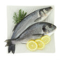 Fresh fishes lemon herbs plate isolated white Royalty Free Stock Photo
