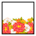 Fresh flower background with plants and flowers Royalty Free Stock Image