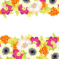 Fresh flower background with plants and flowers Royalty Free Stock Photography