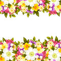Fresh flower background with plants and flowers Stock Photos