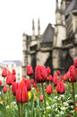 Fresh flower and old church building Royalty Free Stock Images