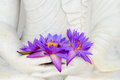 Fresh flowers in buddha image hands flue star water lily or star lotus Stock Photos