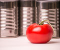 Fresh Food Vs. Canned Food Royalty Free Stock Image