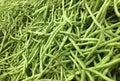 fresh french bean