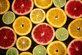 Fresh fruit background from various slices of citrus Royalty Free Stock Photo