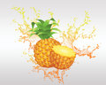 Fresh fruit and fruit juice backround banner Royalty Free Stock Photos