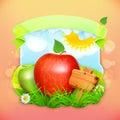 Fresh fruit label apple vector illustration background for making design of a juice pack jam jar etc Stock Images
