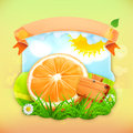 Fresh fruit label orange vector illustration background for making design of a juice pack jam jar etc Stock Photography