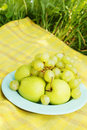 Fresh fruit for a picnic apples and grapes Stock Photography