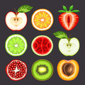 Fresh fruit slices vector illustration of Stock Photography