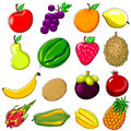 Fresh fruits doodle style various tropical illustration very usefull for food theme Royalty Free Stock Images