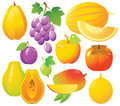 Fresh Fruits Icons Royalty Free Stock Photo