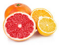 Fresh fruits orange lemon grapefruit in cut Stock Image