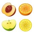 Fresh fruits slice realistic juicy healthy vector illustration vegetarian diet freshness lemon dessert