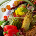 Fresh fruits and vegetables various Stock Image