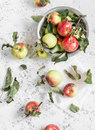 Fresh garden apples on a light background rustic style top view Stock Images