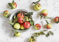 Fresh garden apples on a light background rustic style top view Stock Photography