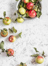 Fresh garden apples on a light background rustic style top view Royalty Free Stock Photos