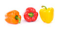 Fresh garden grown yellow and orange and red bell peppers Royalty Free Stock Image