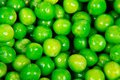 Fresh garden peas shiny wet bright green Stock Image