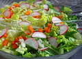Fresh garden salad colorful covered with plastic wrap to keep Royalty Free Stock Photos