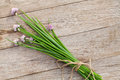 Fresh garden spring onion on garden table Royalty Free Stock Photo