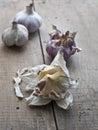 Fresh garlic bulbs Royalty Free Stock Photo