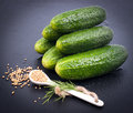 Fresh gherkin and mustard seed Royalty Free Stock Images