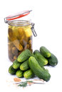 Fresh gherkin and mustard seed Stock Images
