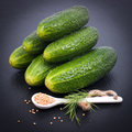 Fresh gherkin and mustard seed Stock Photography