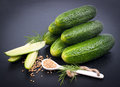 Fresh gherkin and mustard seed Stock Image