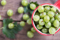 Fresh gooseberries Royalty Free Stock Photo