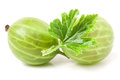 Fresh gooseberries with leaf isolated on white background closeup macro Royalty Free Stock Photo