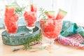 Fresh granita made from water melon Royalty Free Stock Photo
