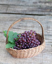Fresh grape fruits in basket Royalty Free Stock Photos