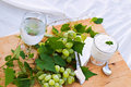 Fresh Grapes, Brie Cheese and Yogurt Stock Photography
