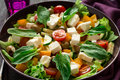 Fresh greek salad with Feta and vegetables Royalty Free Stock Photo