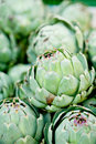Fresh green artichokes macro closeup on market outdoor summer Royalty Free Stock Photos