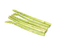 Fresh green asparagus on white background. Royalty Free Stock Photo