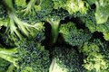Fresh green broccoli as food background Royalty Free Stock Photo