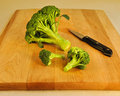 Fresh Green Broccoli on a Wooden Cutting Board. Stock Images