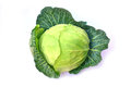 Fresh green cabbage isolated on white background Royalty Free Stock Photo