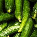 Fresh green cucumber collection on market close up background food background Stock Image