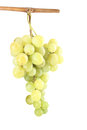 Fresh green grapes with isolated on white Stock Photos
