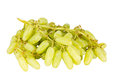 Fresh green grapes isolated on white background Stock Photography