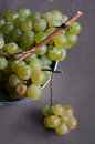Fresh green grapes in metal bucket against dark background Royalty Free Stock Photos