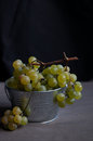 Fresh green grapes in metal bucket against dark background Stock Photography