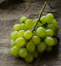 Fresh green grapes over rustic background selective focus Stock Images