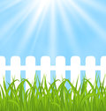 Fresh green grass over wood fence background illustration Stock Photo